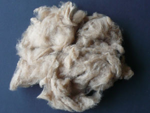 Cashmere - Dehaired Fawn 17.5 MIC (100 gms)