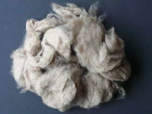 Cashmere - Dehaired Light Grey 17.5 MIC (100 gms)